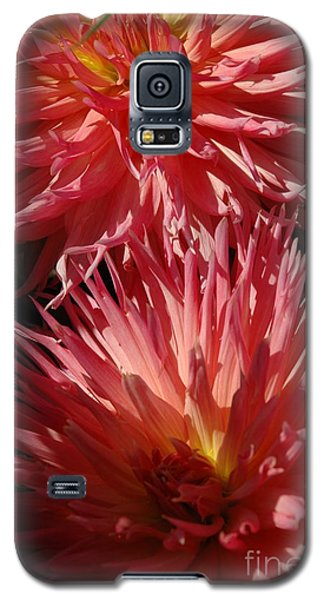Galaxy S5 Case featuring the photograph Dahlia Vi by Christiane Hellner-OBrien