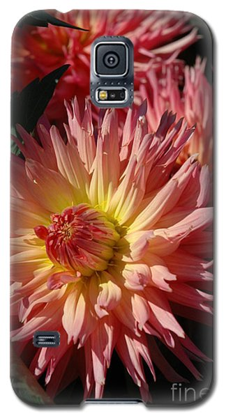 Galaxy S5 Case featuring the photograph Dahlia Viii by Christiane Hellner-OBrien