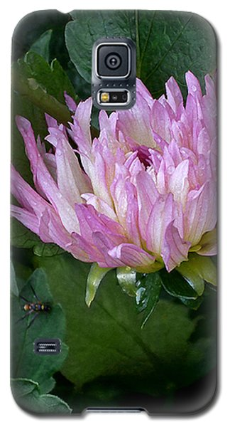 Dahlia With Spider Galaxy S5 Case by Louise Kumpf