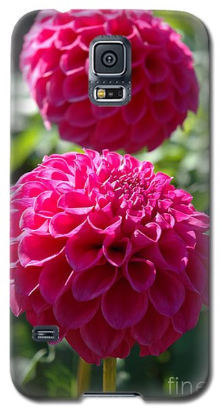 Galaxy S5 Case featuring the photograph Dahlia Xi by Christiane Hellner-OBrien