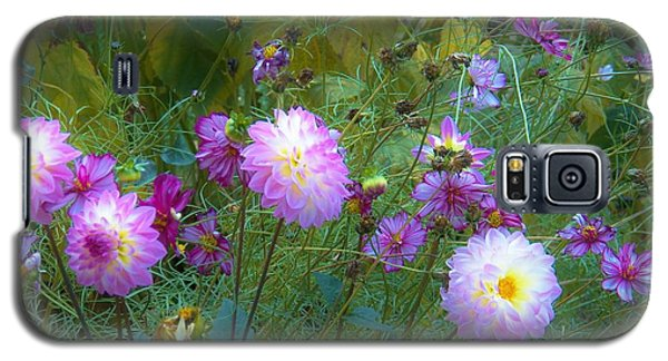 Galaxy S5 Case featuring the photograph Dahlias And Cosmos  by Judy Via-Wolff