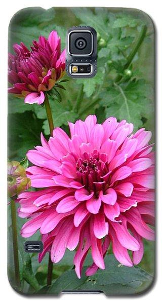 Dahlias Galaxy S5 Case