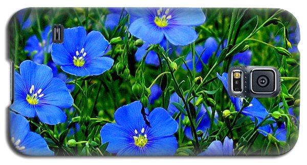 Dainty Blue Flax Linum Galaxy S5 Case