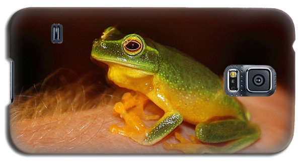 Dainty Tree Frog  Galaxy S5 Case