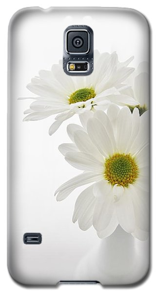 Daisies For You Galaxy S5 Case