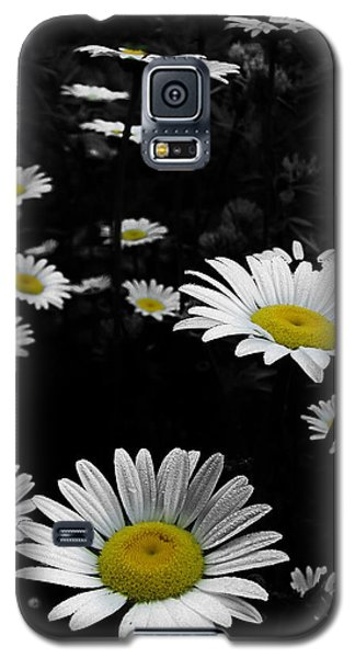 Daisies Galaxy S5 Case by GJ Blackman