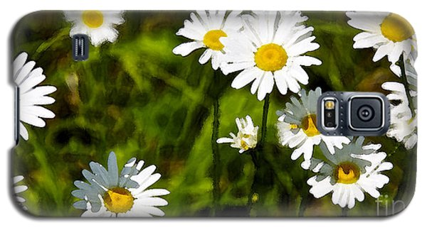 Galaxy S5 Case featuring the photograph Daisies In Watercolor by Susan Crossman Buscho