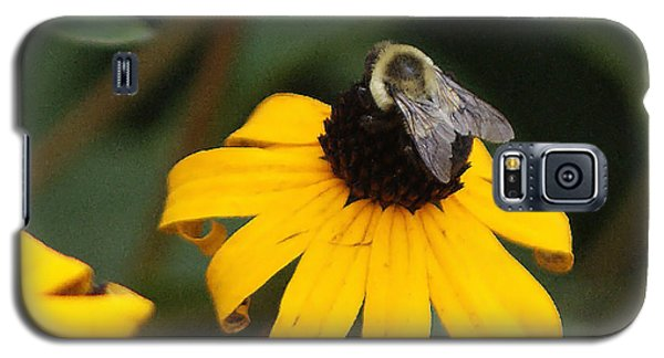 Galaxy S5 Case featuring the photograph Daisy Bumble Bee by B Wayne Mullins