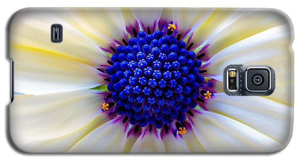 Daisy Centre Galaxy S5 Case