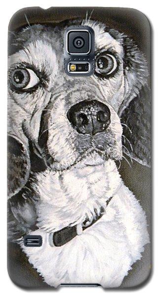 Daisy Dog Galaxy S5 Case by Kevin F Heuman