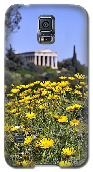 Galaxy S5 Case featuring the photograph Daisy Flowers In Ancient Market by George Atsametakis