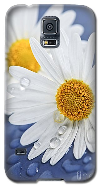 Daisy Flowers With Water Drops Galaxy S5 Case
