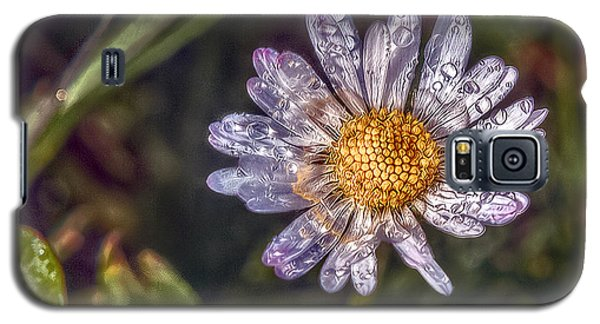 Galaxy S5 Case featuring the photograph Daisy by Hanny Heim
