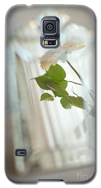 Galaxy S5 Case featuring the photograph Daisy In The Mirror by Aiolos Greek Collections