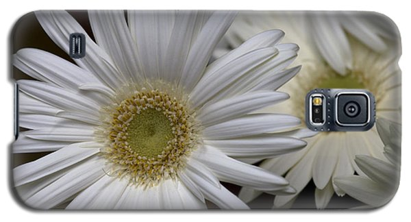 Daisy Photo Galaxy S5 Case