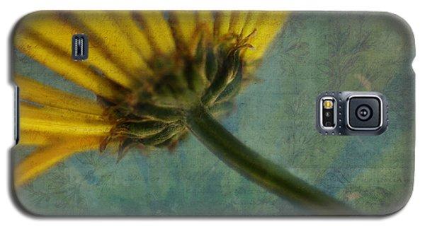 Daisy Reach Galaxy S5 Case by Erika Weber