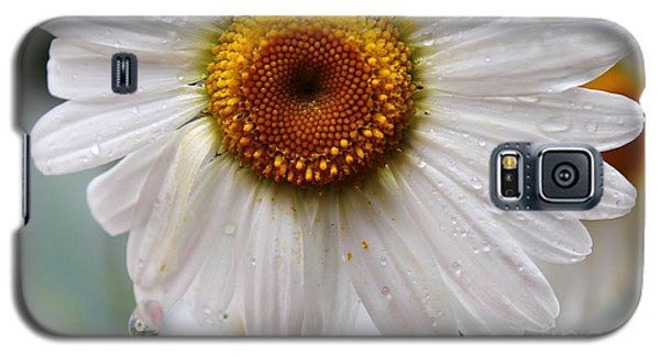 Daisy Reflect Galaxy S5 Case