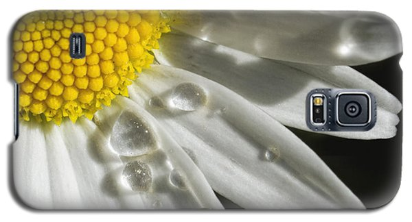 Galaxy S5 Case featuring the photograph Daisy With Raindrops by Rob Graham