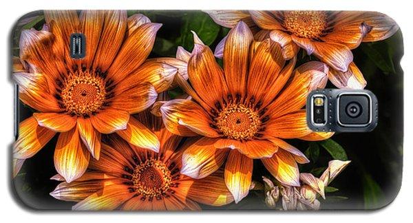 Daisy Wonder Galaxy S5 Case