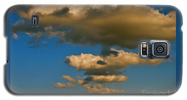 Dali-like Galaxy S5 Case by Joy Hardee