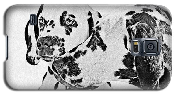Dalmatians - A Great Breed For The Right Family Galaxy S5 Case