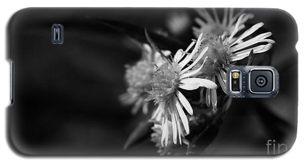Galaxy S5 Case featuring the photograph Dames En Noir by Linda Shafer