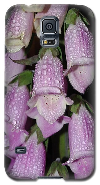 Galaxy S5 Case featuring the photograph Damp Foxglove by Adria Trail