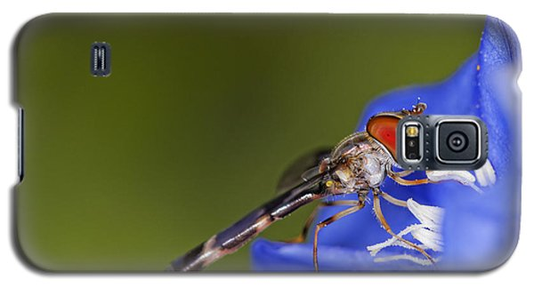 Damselfly 2 Galaxy S5 Case