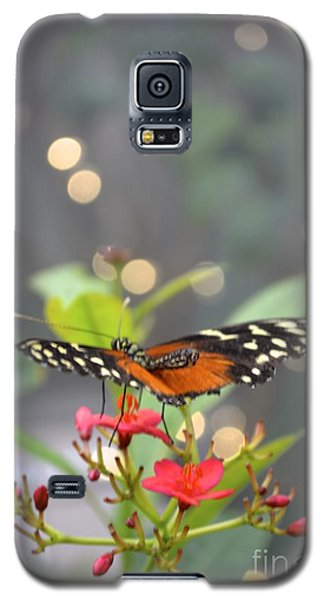 Galaxy S5 Case featuring the photograph Dance Of The Butterfly by Carla Carson