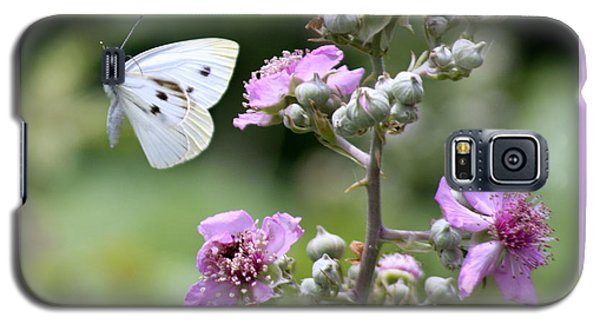 Galaxy S5 Case featuring the photograph Dance Of The Butterfly by Martina  Rathgens