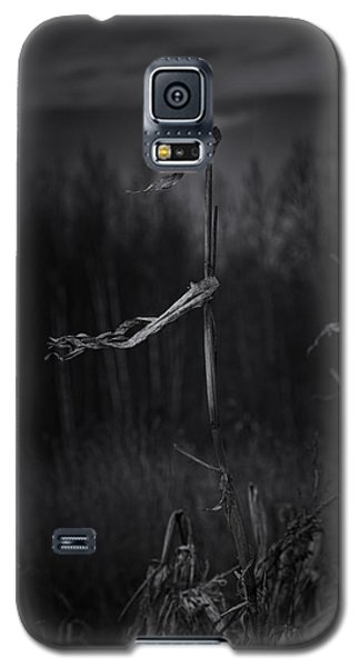 Dance Of The Corn Galaxy S5 Case by Susan Capuano