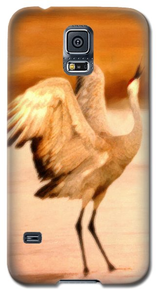 Dance Of The Crane Galaxy S5 Case