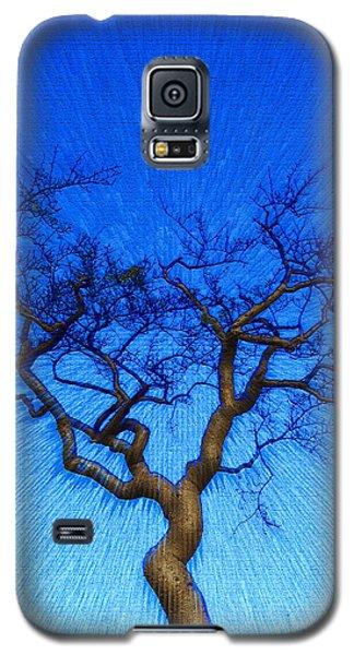 Dance Of The Dawn Galaxy S5 Case
