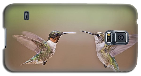 Dance Of The Hummingbirds Galaxy S5 Case