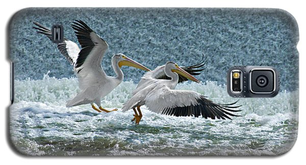 Galaxy S5 Case featuring the photograph Dance Of The Pelicans by Judy  Johnson
