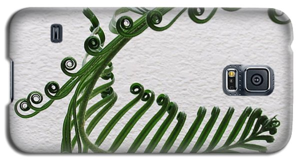 Galaxy S5 Case featuring the photograph Dance Of The Sago by Brenda Pressnall