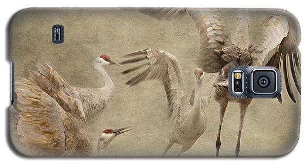 Dance Of The Sandhill Crane Galaxy S5 Case
