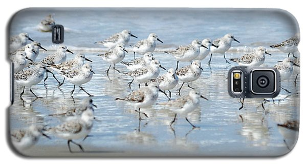 Dance Of The Sandpipers Galaxy S5 Case