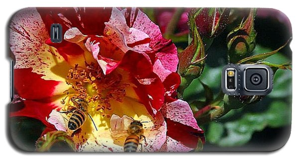 Galaxy S5 Case featuring the photograph Dancing Bees And Wild Roses by Absinthe Art By Michelle LeAnn Scott