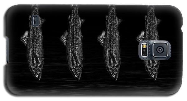 Dancing Fish At Night 1 Galaxy S5 Case by Evgeniy Lankin