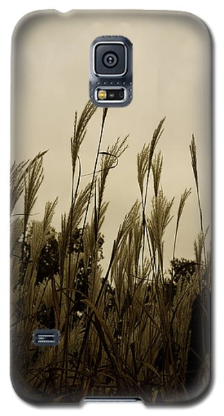 Dancing Grass Galaxy S5 Case