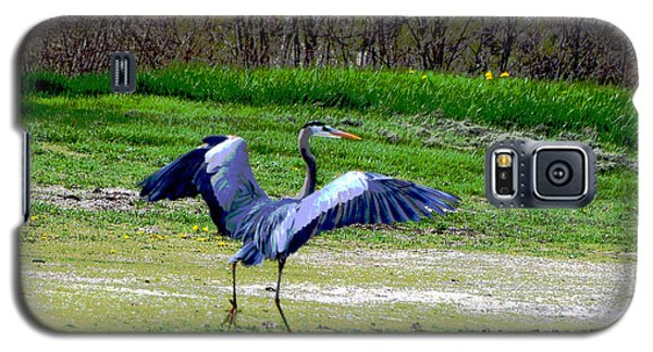 Dancing Heron Galaxy S5 Case