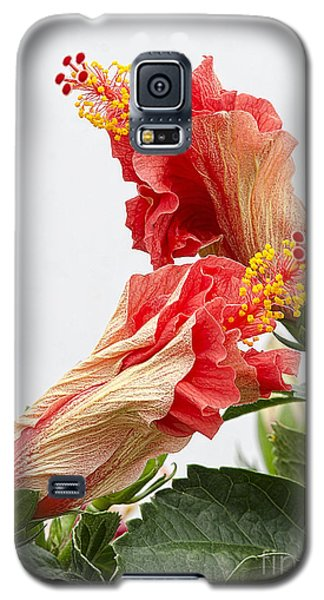 Dancing Hibiscus Galaxy S5 Case by Wanda Krack