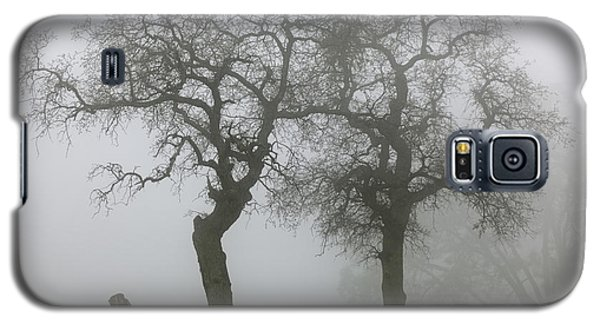 Dancing Oaks In Fog - Central California Galaxy S5 Case