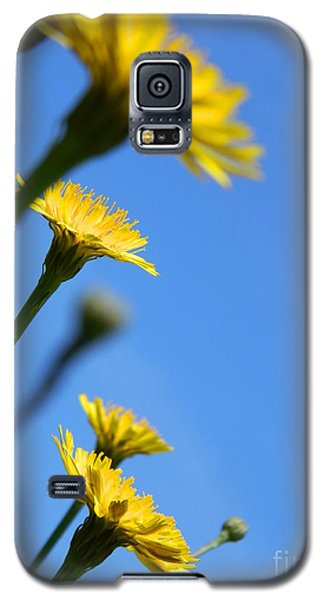 Dancing With The Flowers Galaxy S5 Case by Andrea Anderegg