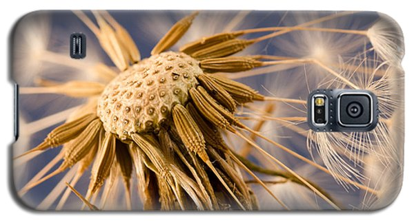 Dandelightful Galaxy S5 Case by Don Schwartz