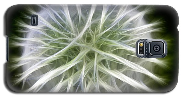 Dandelion Abstract Galaxy S5 Case