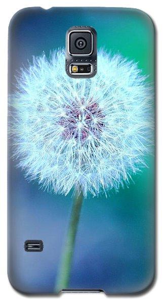 Dandelion Blue Galaxy S5 Case by Elizabeth Budd