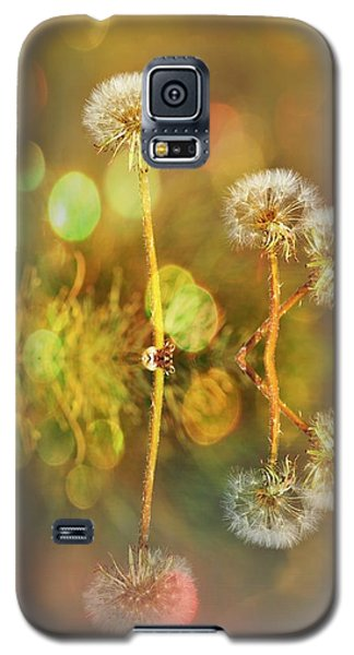 Dandelion Delight Galaxy S5 Case by Fraida Gutovich