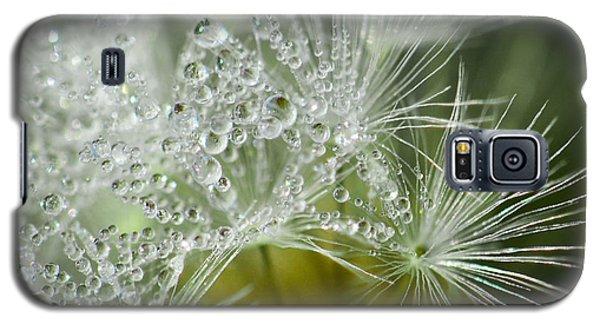 Dandelion Dew Galaxy S5 Case